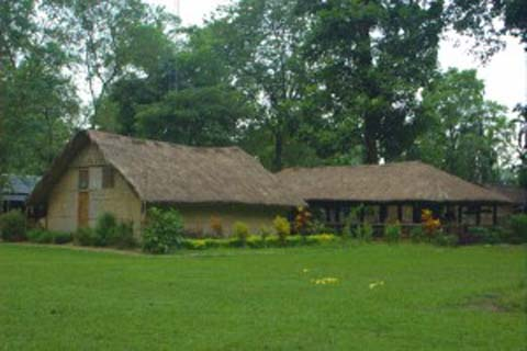 nameri camp is an eco friendly camp in Assam! A great spot to be at!
